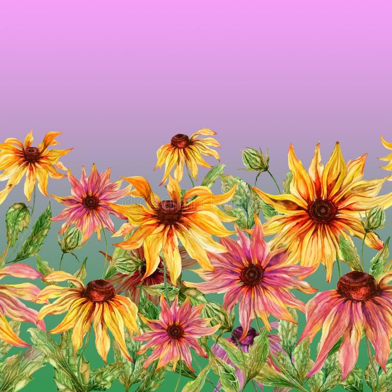 与绿色叶子的美好的海胆亚目花coneflower在桃红色背景 无缝花卉的模式 多孔黏土更正高绘画photoshop非常质量扫描水彩 向量例证