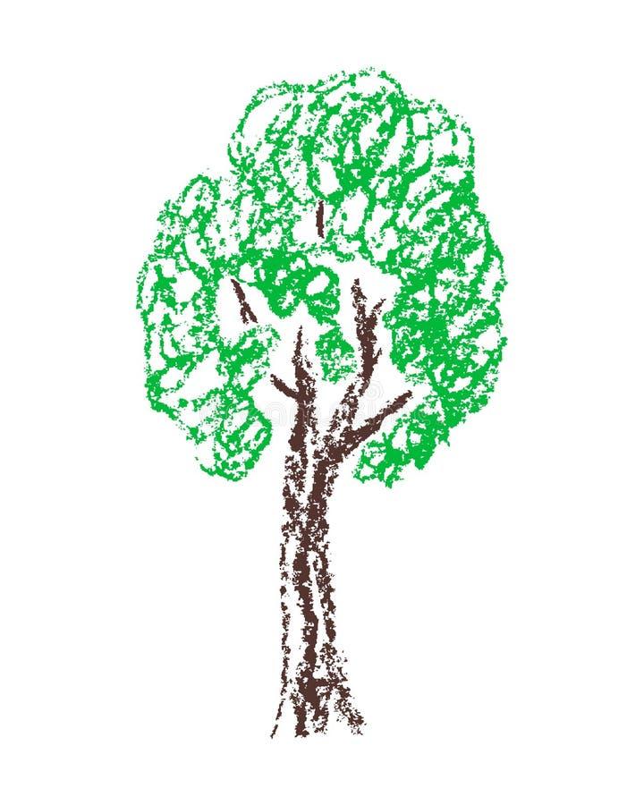 与绿色叶子的蜡笔手拉的树 皇族释放例证