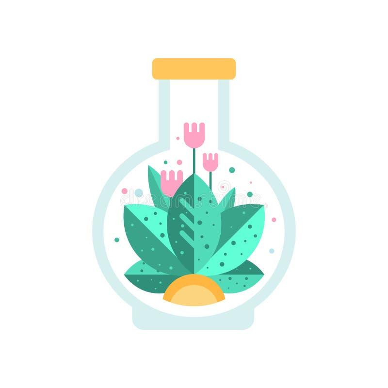 与绿色叶子里面玻璃玻璃容器的桃红色花在烧瓶形状  开花的植物平的传染媒介象  向量例证