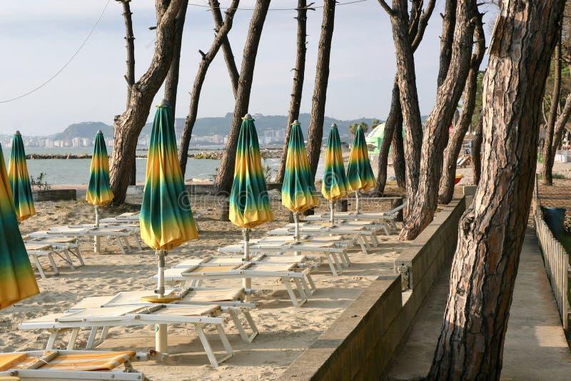 与绿色和黄色太阳树荫的空的海滩 免版税库存图片