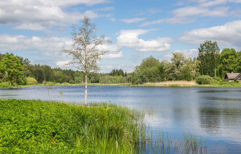 与绿色在天空蔚蓝的森林白色云彩包围的湖的风景夏天风景 图库摄影