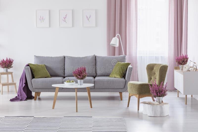 与绿色坐垫的灰色长椅和在白色客厅内部真正的照片的紫色毯子与咖啡桌的 免版税库存图片