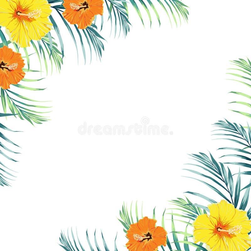 与绿色密林棕榈树的热带设计边界框架模板离开和异乎寻常的橙色和黄色木槿花夫妇 向量例证