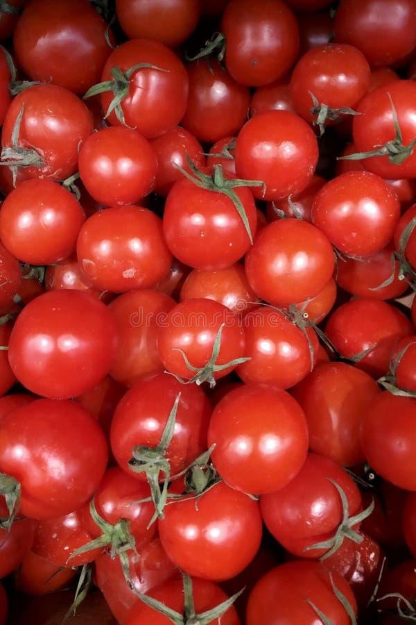 与绿色尾巴的新鲜蔬菜红色蕃茄关闭在箱子,箱子背景在健康的市场上 库存照片
