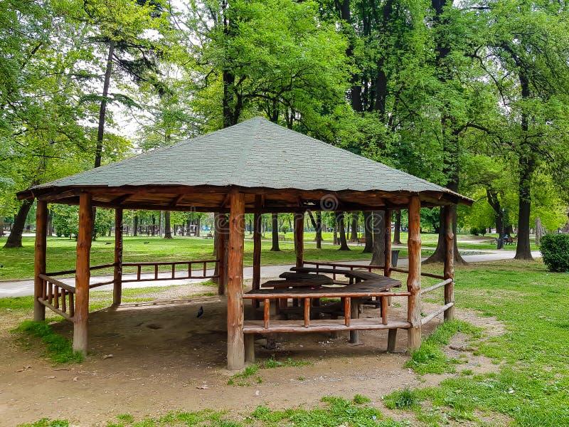 与绿色屋顶的木荫径在城市公园 免版税库存图片