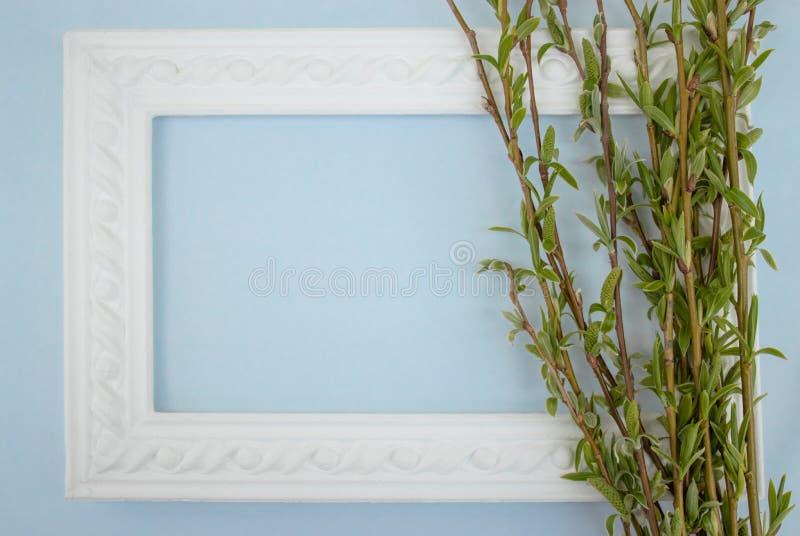 与绿色杨柳分支的白色框架在蓝色背景的 E 库存照片