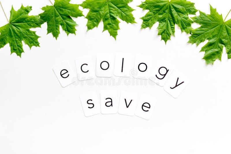 与绿色枫叶的生态保存拷贝在白色背景顶视图的eco概念的 库存图片