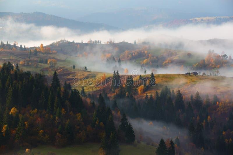 与绿色树、桔黄色森林、高山和蓝天的美好的秋天风景 宽路 秋天场面 免版税库存图片