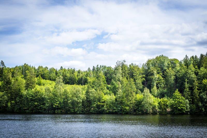 与绿色树和天空蔚蓝的湖风景 免版税图库摄影