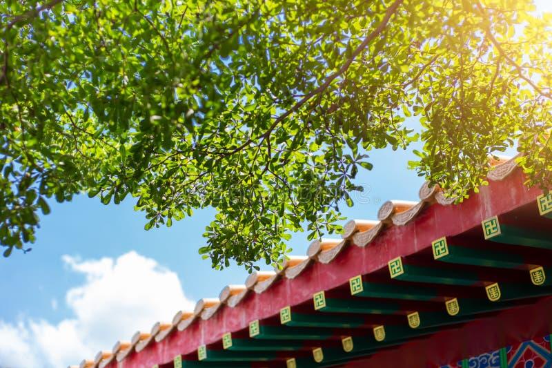 与绿色树新鲜空气新鲜的天空蔚蓝的中国屋顶样式大厦 瓷eco能承受的城市概念 免版税库存照片