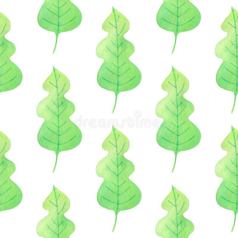 与绿色橡木叶子的样式 向量例证