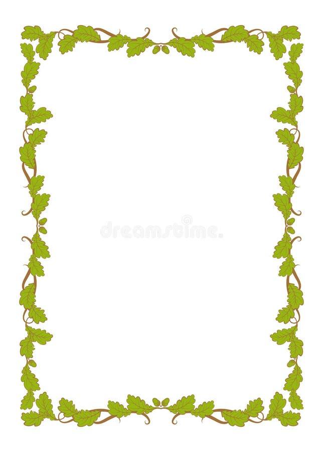 与绿色橡木叶子的装饰品的框架 向量例证