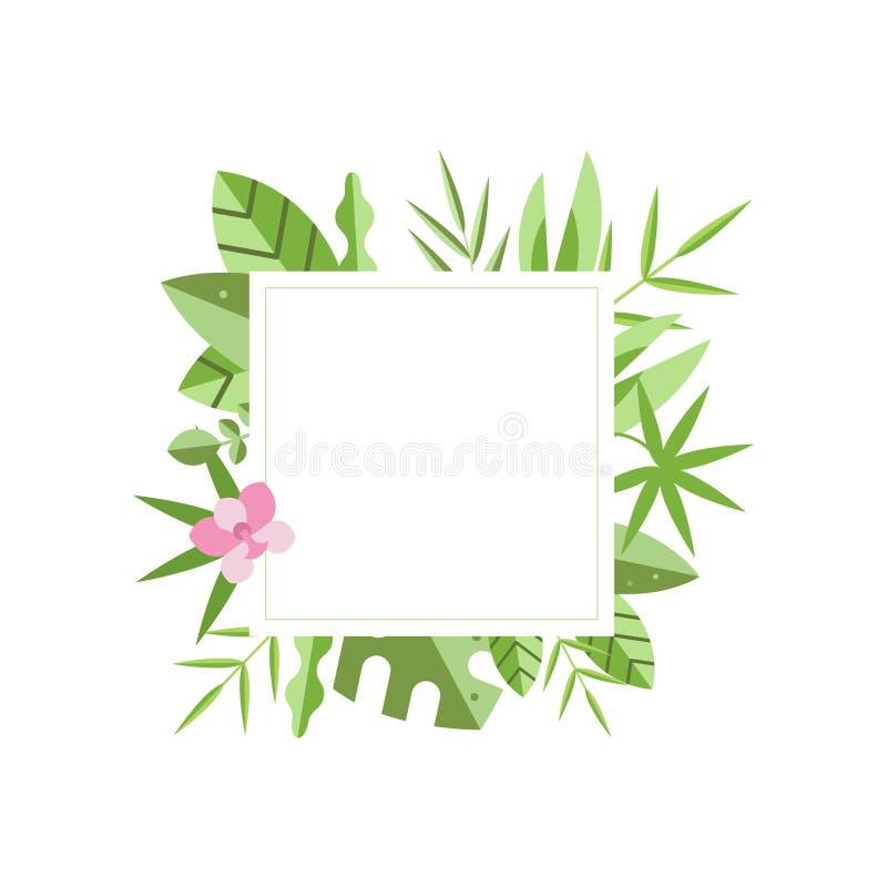 与绿色热带叶子和桃红色花的方形的框架在背景 自然边界 横幅的,飞行物平的传染媒介 向量例证