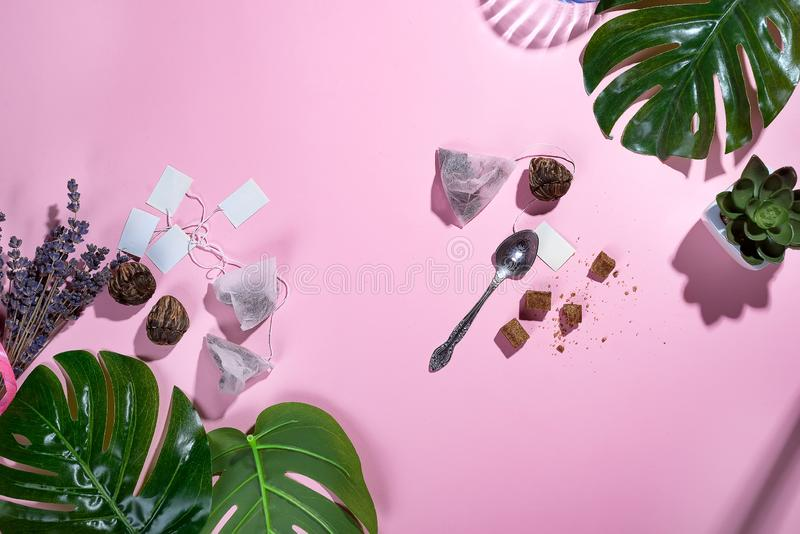 与绿色热带叶子和茶杯的工作区框架,茶包和糖在粉红彩笔背景与深阴影 库存照片