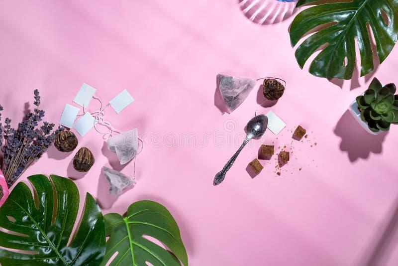 与绿色热带叶子和茶杯的框架,茶包和糖在粉红彩笔背景与美丽的深阴影 免版税图库摄影