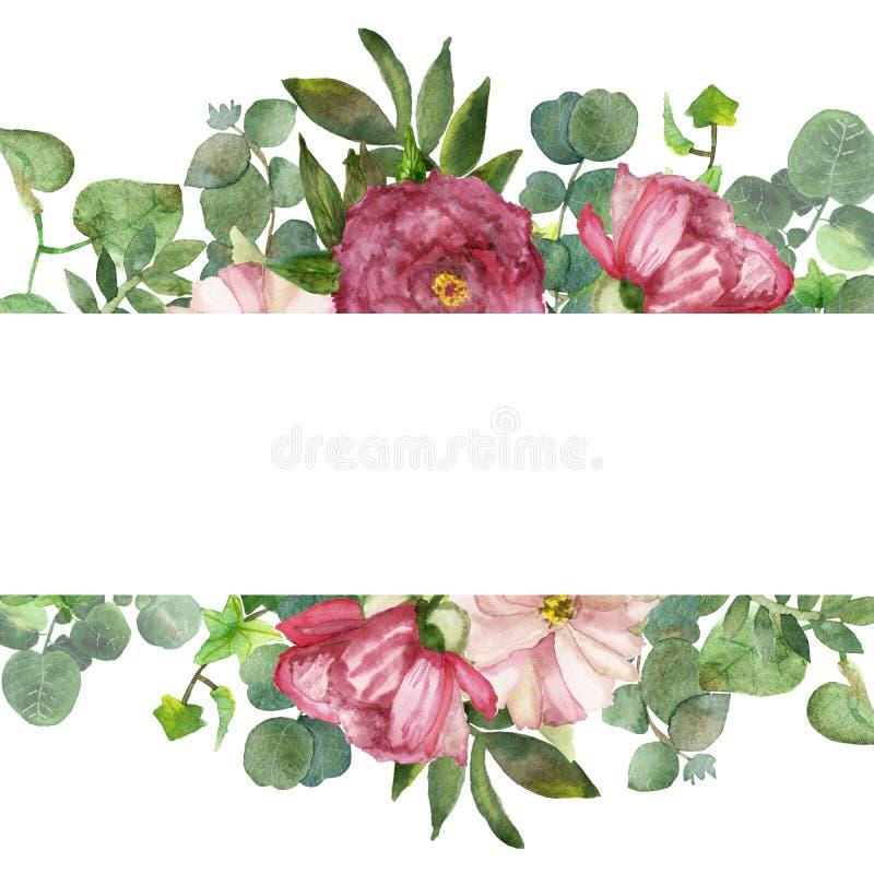 与绿色玉树叶子和桃红色中介子花的水彩手画夏天花束框架 向量例证