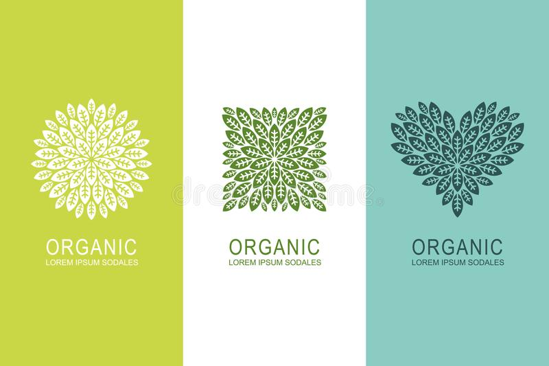 与绿色的商标或标签概念在圈子、正方形和心脏形状离开 有机eco产品设计元素 库存例证