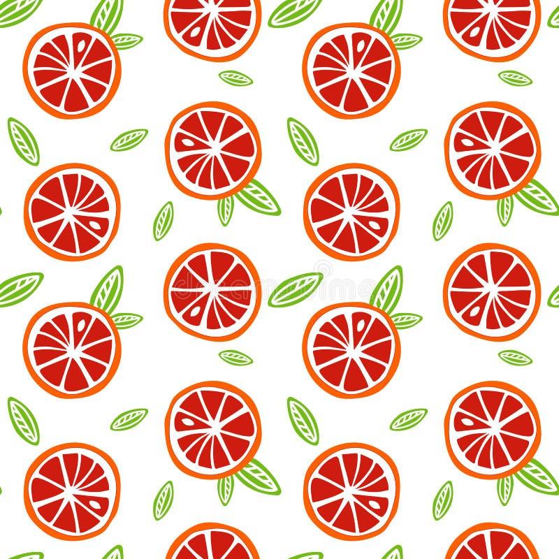 与绿色的果子橙色和红色葡萄柚在白色bac离开 皇族释放例证