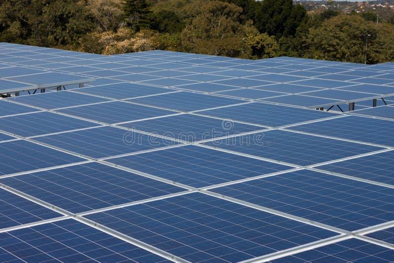 与绿色结构树的可再造能源太阳电池板 库存图片
