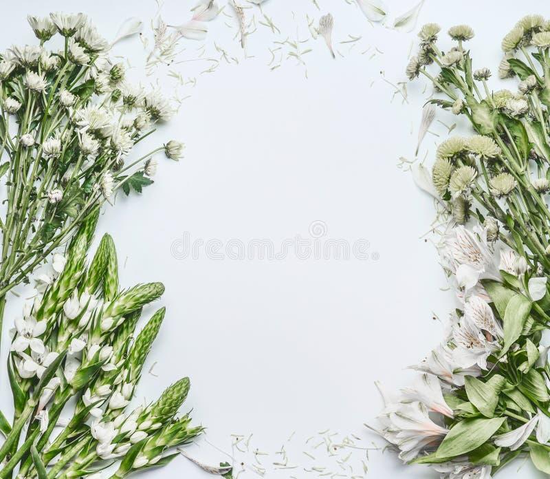 与绿色花的美好的花卉框架布局做在白色背景的花束的 免版税库存图片