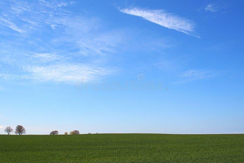 与绿色草甸天空蔚蓝的美丽的最低纲领派春天风景平原与白色云彩 免版税库存图片