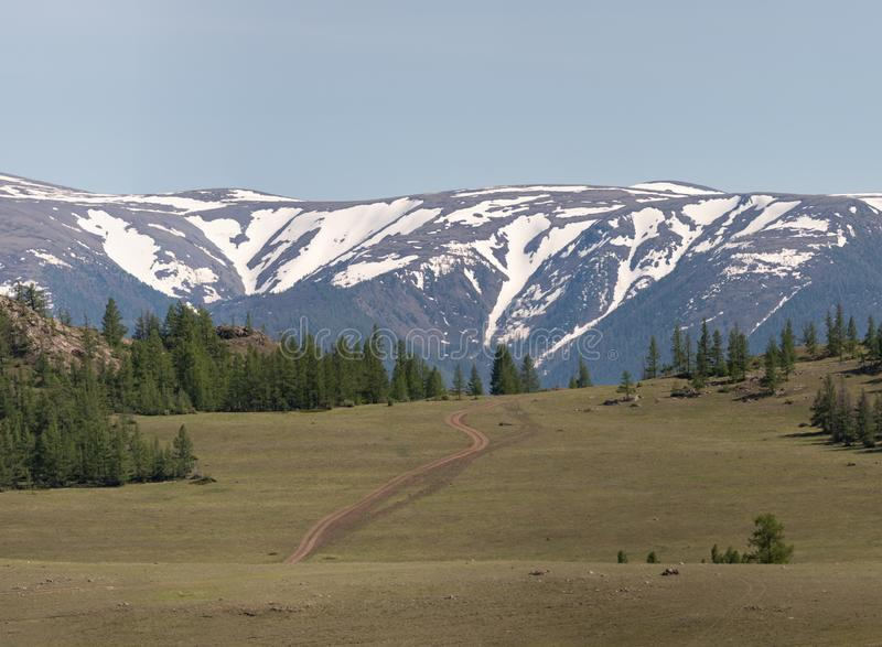 与绿色落叶松属的山风景反对towe背景  库存图片