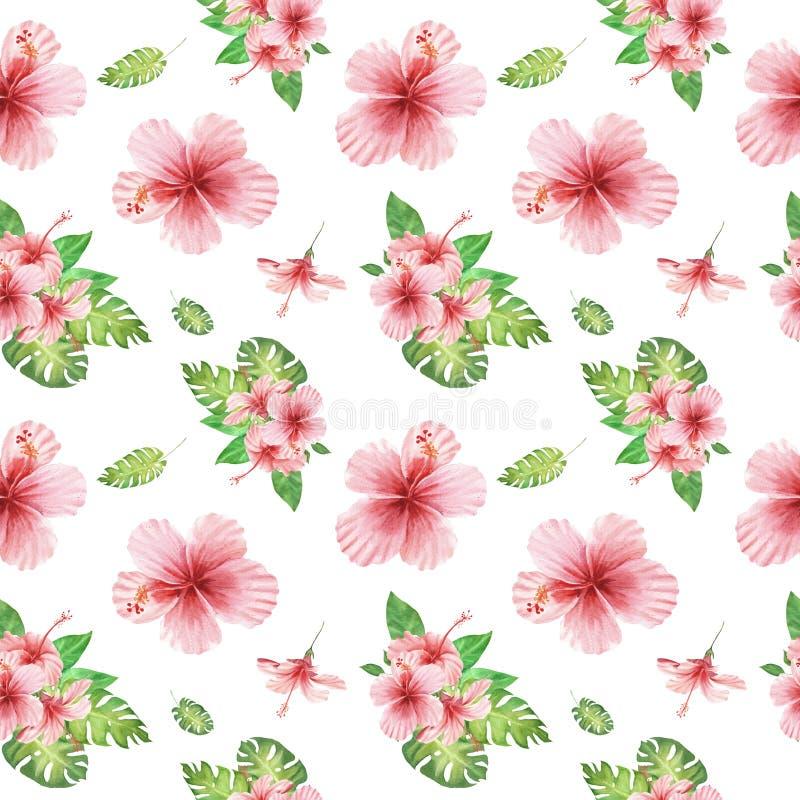与绿色monstera叶子和桃红色木槿花的水彩花卉热带无缝的样式在白色 向量例证