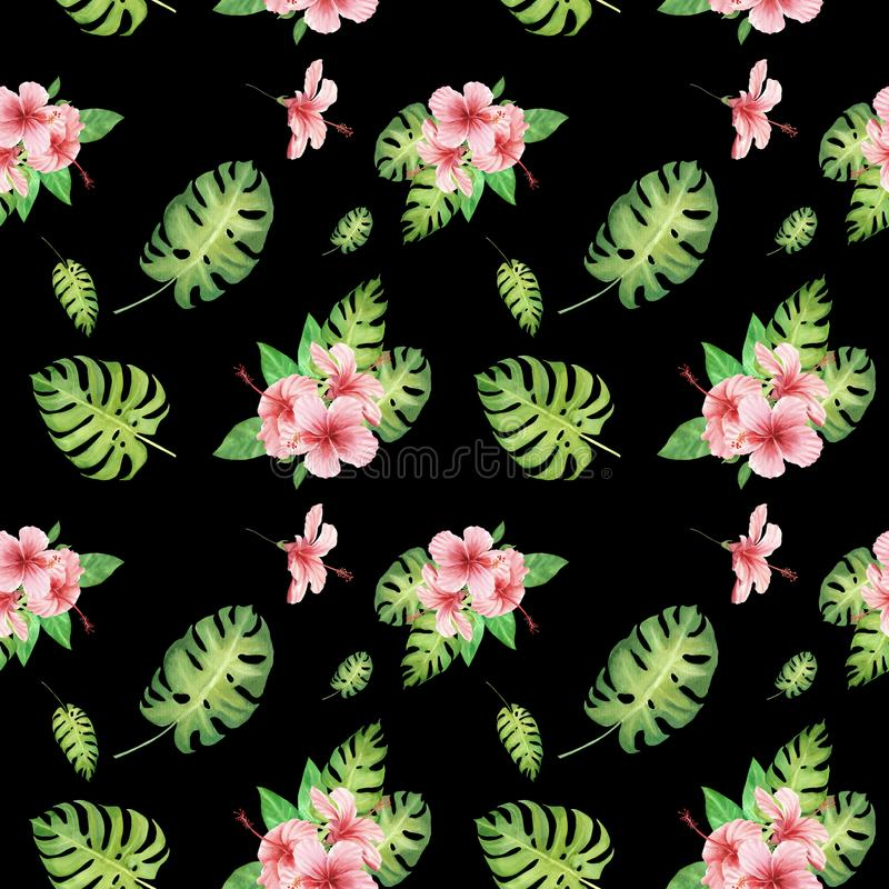 与绿色monstera叶子和桃红色木槿花的水彩花卉热带无缝的样式在黑色 皇族释放例证