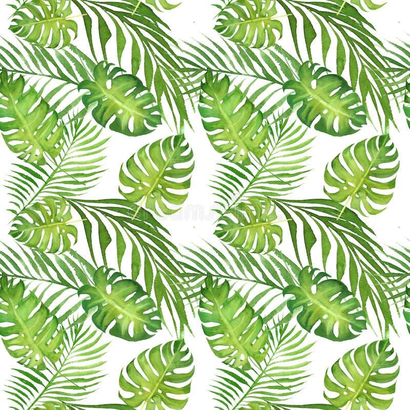 与绿色monstera叶子和棕榈树叶子的水彩花卉热带无缝的样式在白色 皇族释放例证