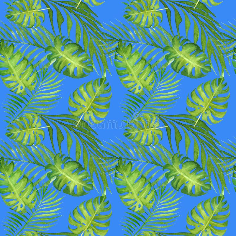 与绿色monstera叶子和棕榈树叶子的水彩花卉热带无缝的样式在蓝色 皇族释放例证