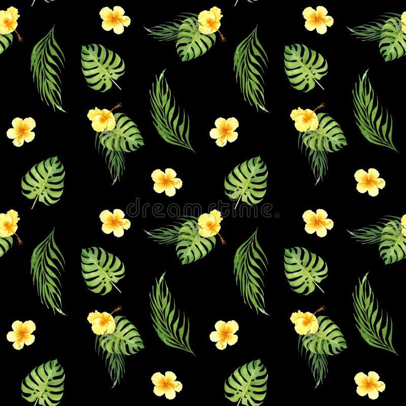 与绿色monstera叶子和黄色木槿花的水彩花卉热带无缝的样式 库存例证