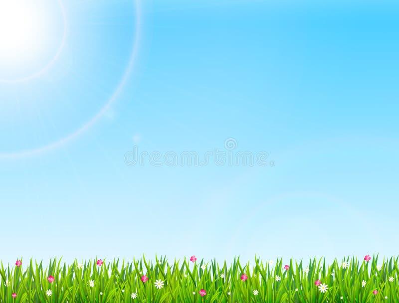 与绿草和花的春天或夏天自然背景 r 库存例证