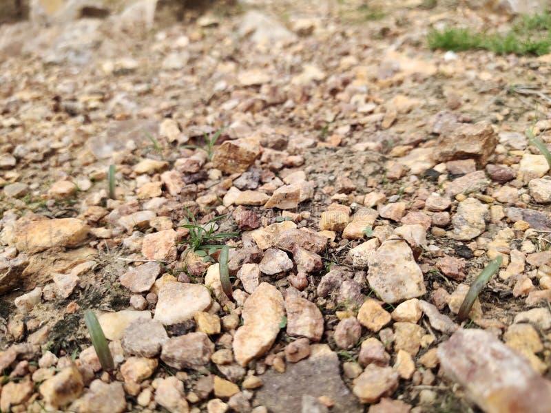 与绿草的老石头 背景,草 免版税图库摄影