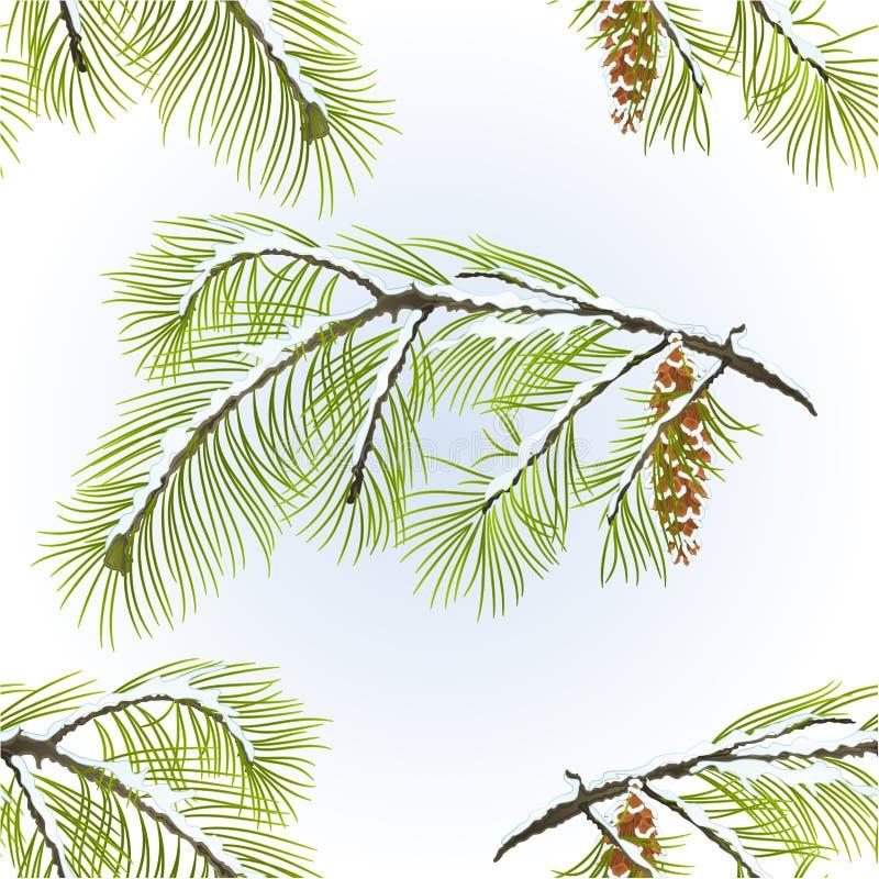 与编辑可能杉木锥体冬天多雪的自然本底葡萄酒传染媒介的例证的无缝的纹理美国五针松分支 向量例证