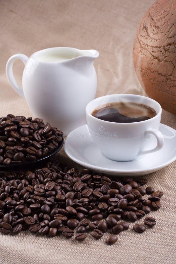 与罐头的咖啡牛奶 库存照片