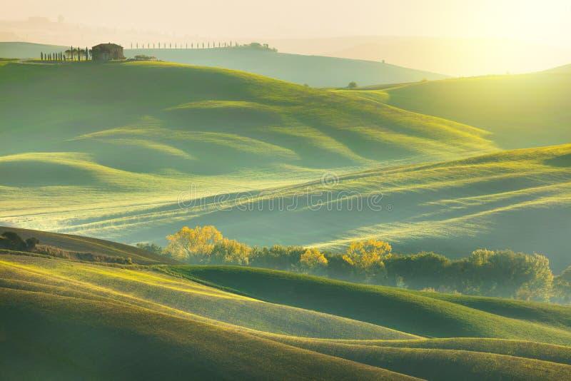 与美丽的小山的晴朗的早晨托斯卡纳风景 库存照片
