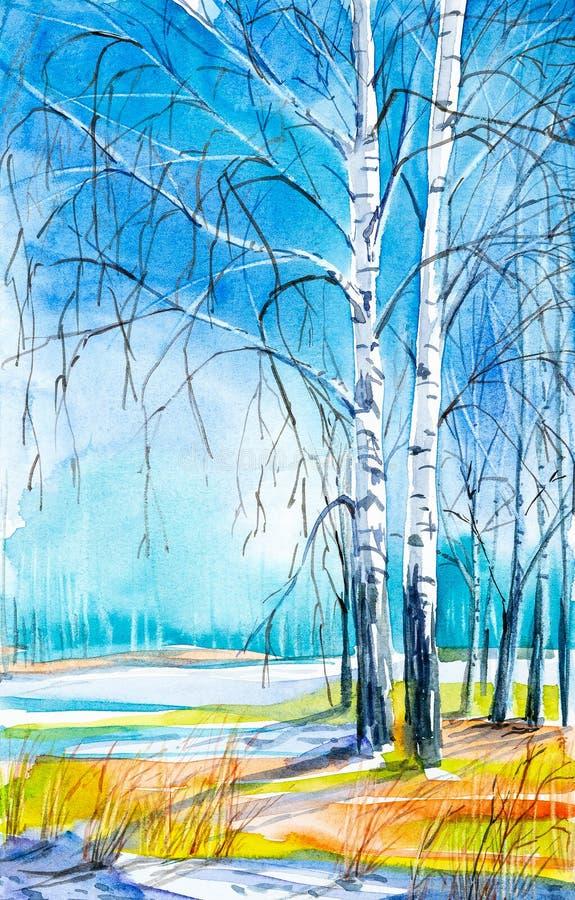 与美丽的桦树的俄国森林风景在与熔化的雪的清洁 库存例证
