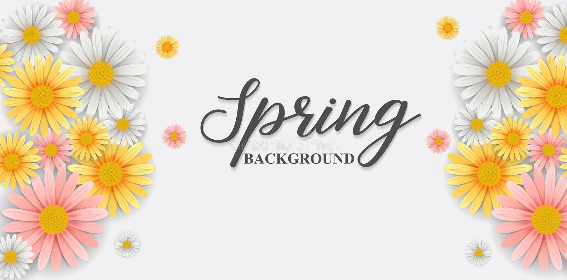 与美丽的花的春天背景 皇族释放例证