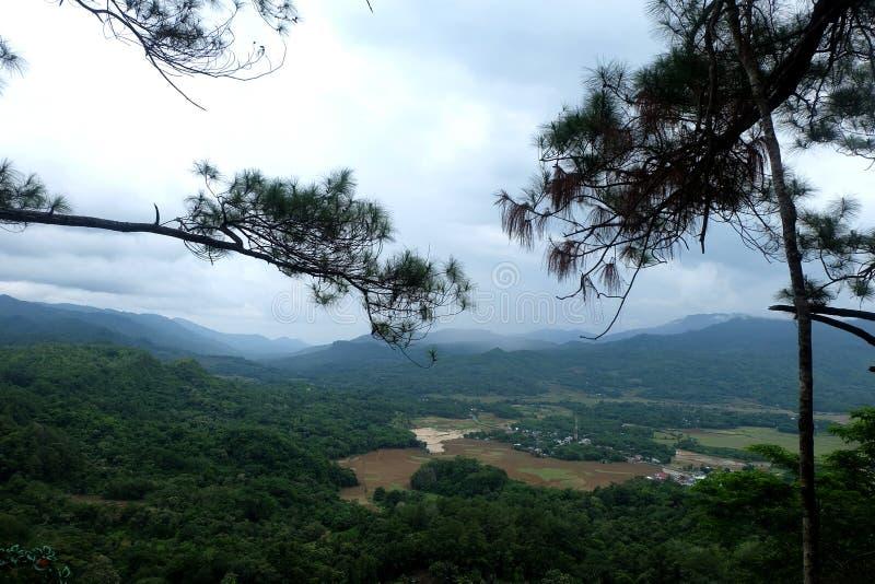 与美丽的蓝天的绿色风景 免版税库存照片