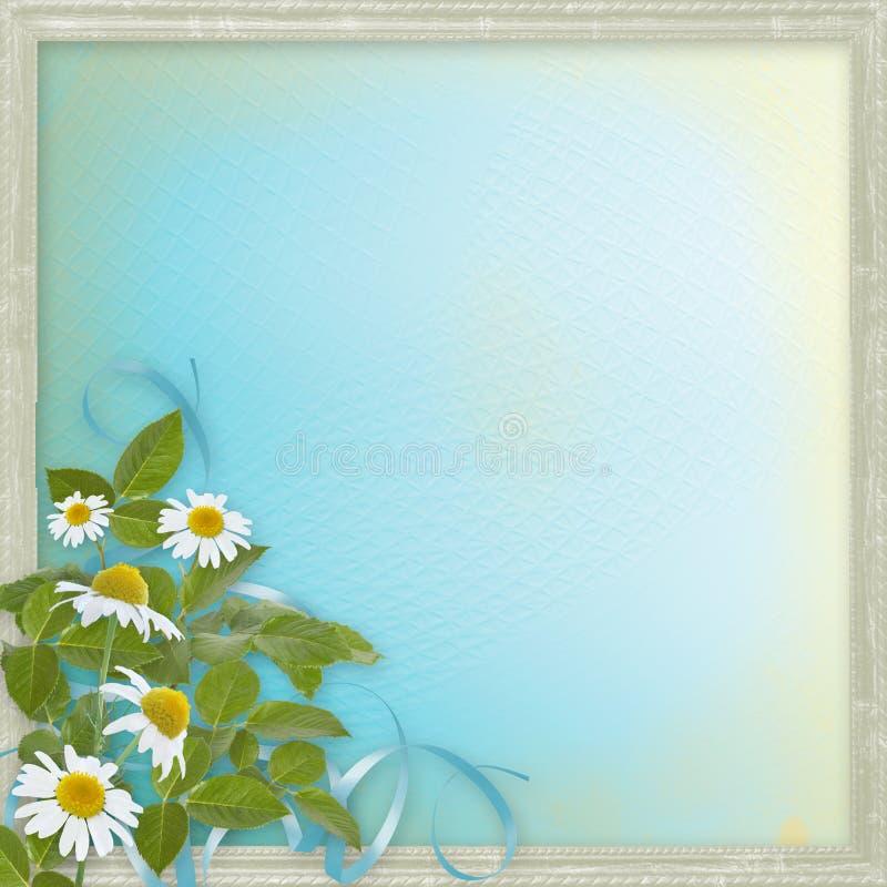 与美丽的雏菊的Grunge框架 库存例证
