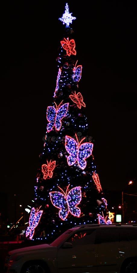 与美丽的蝴蝶的圣诞树 免版税库存照片
