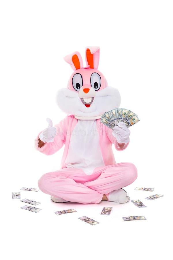 与美元爱好者的复活节兔子兔子,庆祝复活节 富有的幸运人拿着金钱一百元钞票 免版税库存图片