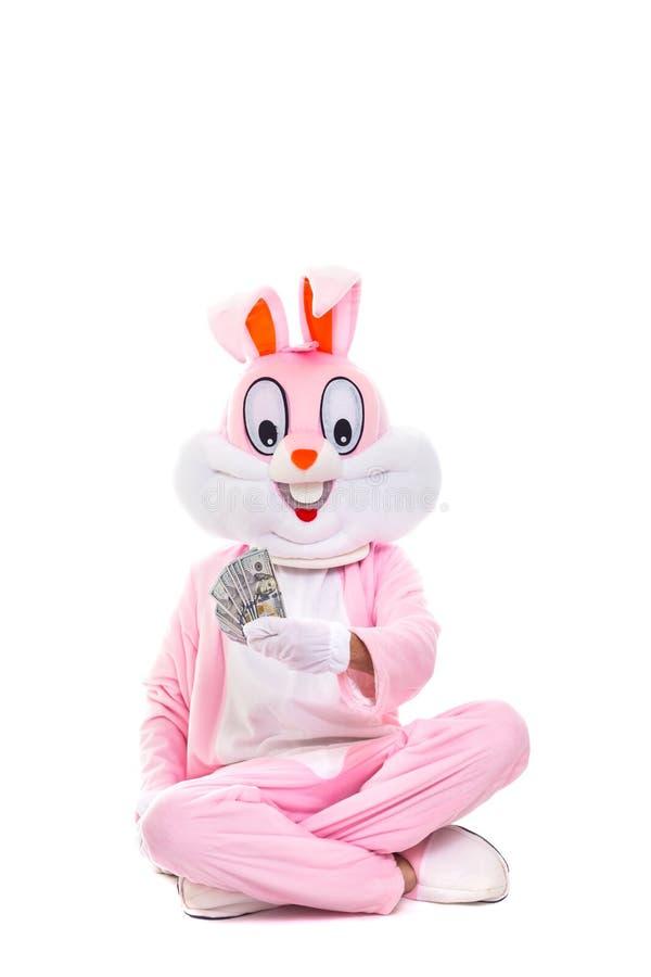 与美元爱好者的复活节兔子兔子,庆祝复活节 富有的幸运人拿着金钱一百元钞票 免版税库存照片