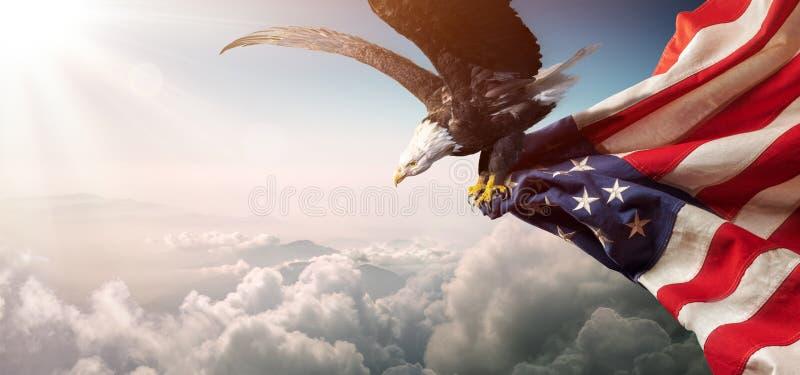 与美国国旗的老鹰飞行 免版税库存照片