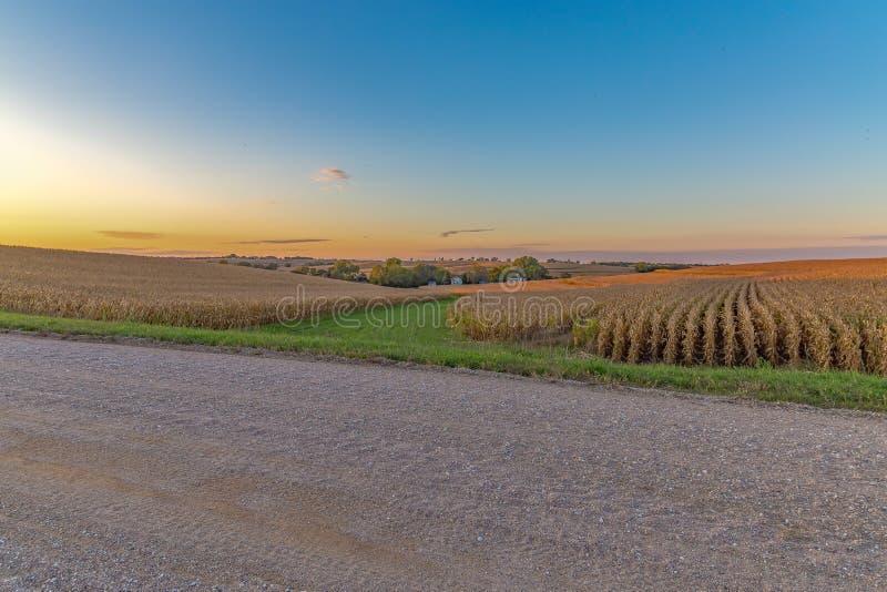 与美好的地平线的美好的日落在一块麦地在奥马哈内布拉斯加 免版税库存照片