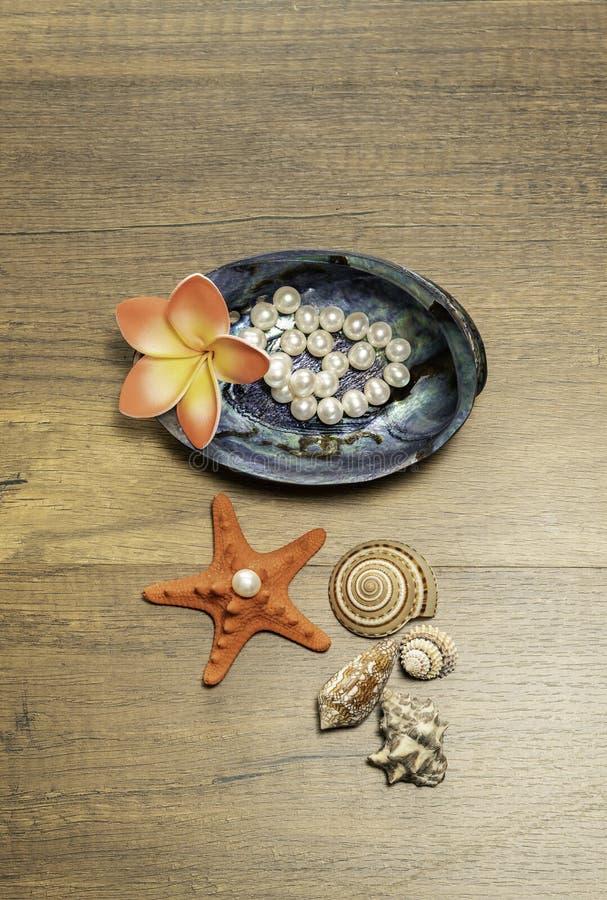 与羽毛花和橙色海星的白色珍珠在木桌上 免版税库存图片
