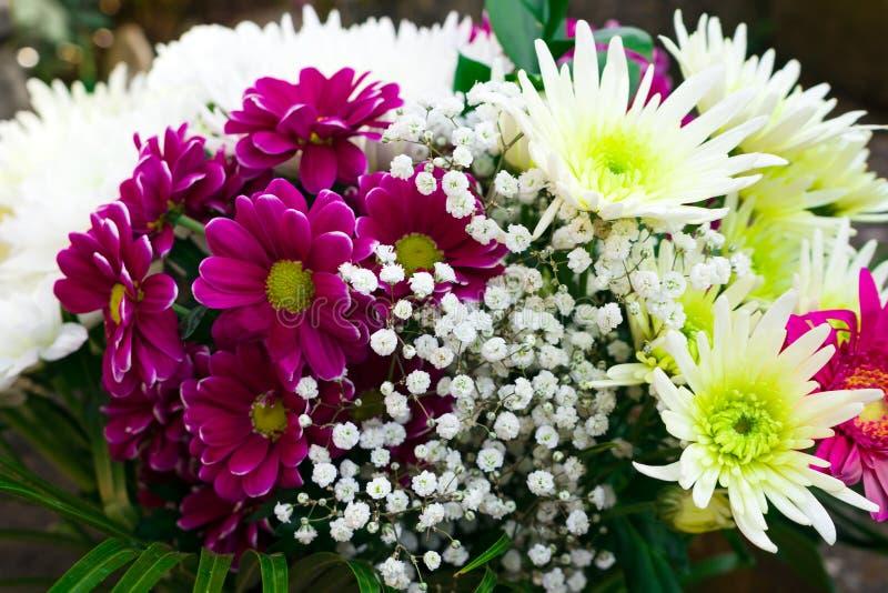 与翠菊、菊花、麦和大丁草的美丽的花束 库存照片