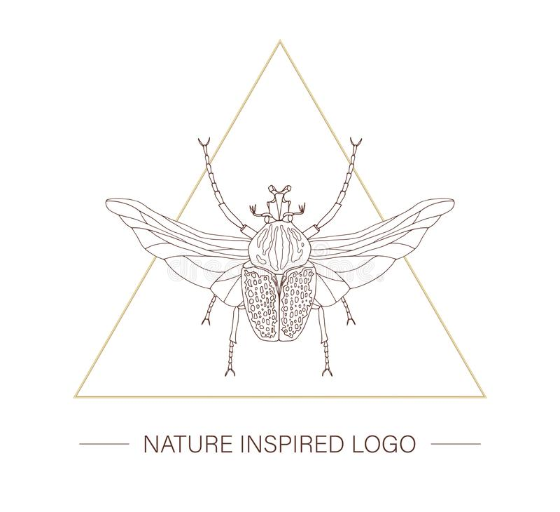 与翼的传染媒介手拉的热带巨人甲虫在三角 向量例证