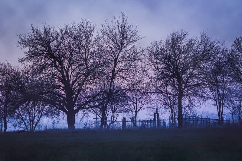 与老公墓的忧郁风景 库存照片