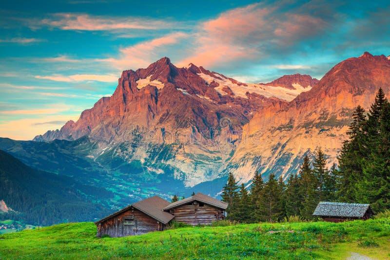 与老木小屋的令人惊讶的夏天高山风景,格林德瓦,瑞士 免版税库存照片